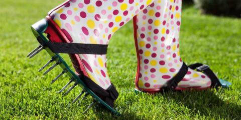 Why You Need to Aerate Your Lawn , Lincoln, Nebraska
