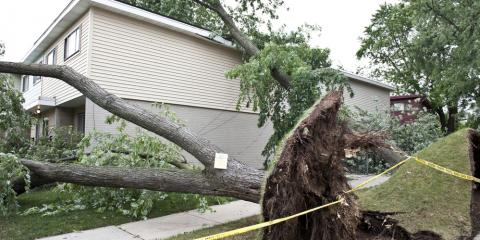 3 Compelling Reasons to Get Storm Damage Repaired ASAP, Savage, Minnesota