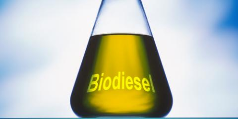 What Is Biodiesel Fuel?, Monroe, Ohio