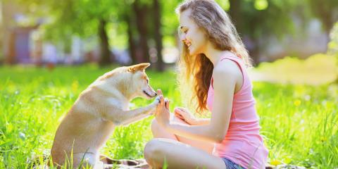 4 Ways to Memorialize Your Pet, Koolaupoko, Hawaii