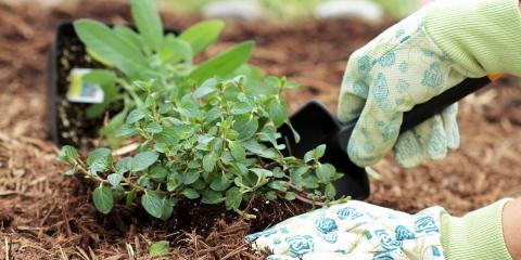 4 Ways Mulching Benefits Your Garden, Johnstown, Ohio