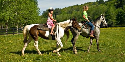 3 Core Pieces of Gear for Horseback Riding, Lebanon, Ohio