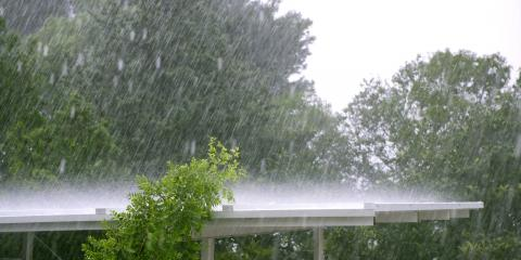 3 Ways Heavy Rains Can Impact Trees, Owings Mills, Maryland