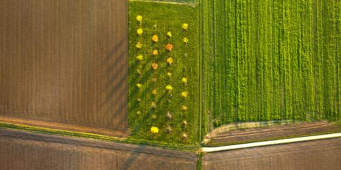 Guide to Farming: 3 FAQs About In-Season Imagery, Adams, Wisconsin