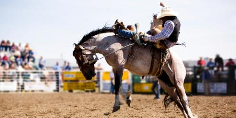 A Hotel's Top 5 Tips for First-Time Rodeo Attendees, Levelland, Texas