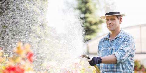 4 Signs You're Overwatering Your Garden, Altadena, California