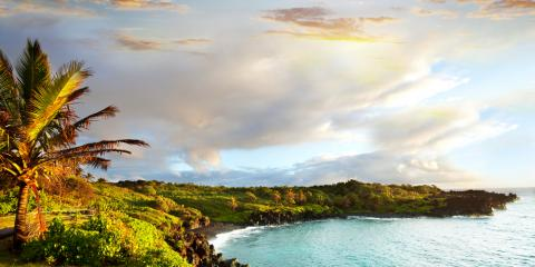 Why You Should Try a Clear-Bottom Kayak Tour , Waialua, Hawaii