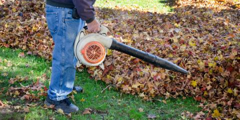 3 Unusual Uses for Your Leaf Blower, Franklinville, New York