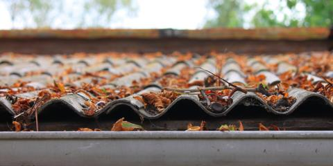 Why You Should Remove Fall Leaves From Your Roof ASAP, Montrose, Michigan