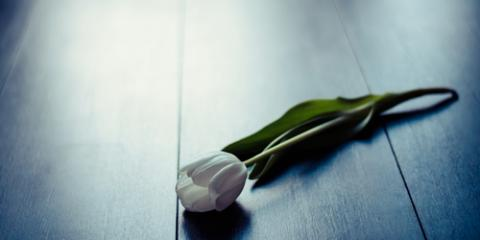 What You Should Know About Cremations, North Haven, Connecticut