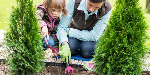 3 Ways Mulch Benefits Your Landscape Design, Delhi, Ohio