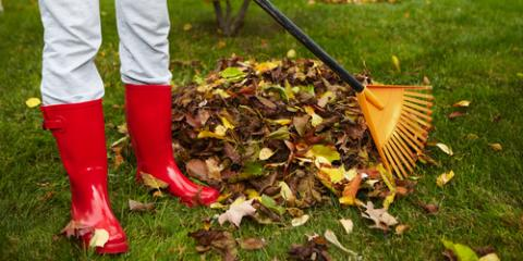 Pest Exterminator on 3 Ways to Ward Off Critters This Winter, Columbus, North Carolina