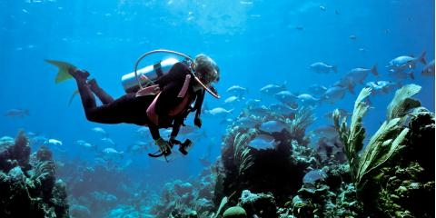 What to Know Before Scuba Diving, Honolulu, Hawaii