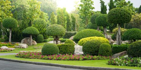 Tree Service Shares 3 Landscaping Tips for Curb Appeal, West Hartford, Connecticut