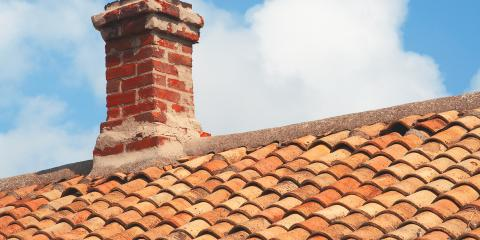 A Brief Guide to Chimney Pest Control Problems, Dayton, Ohio