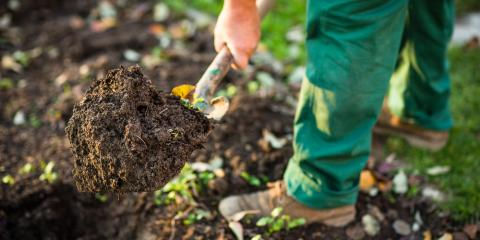 Your Official Guide to Different Types of Mulch & How You Can Use Them in Your Landscape, Lexington-Fayette, Kentucky