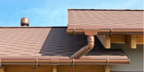 4 Animals That Could Be Nesting in Your Gutters, Charlotte, North Carolina