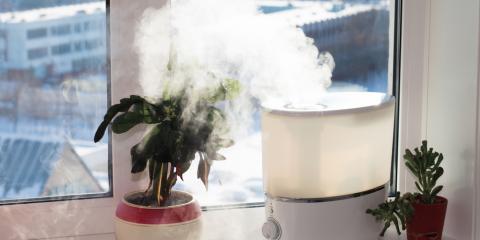 3 Amazing Benefits of Home Humidifiers, Newport-Fort Thomas, Kentucky