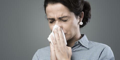 6 Mosquito-Borne Diseases, Hanover, Massachusetts