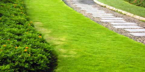 Why Your Lawn is Browning , Ballwin, Missouri