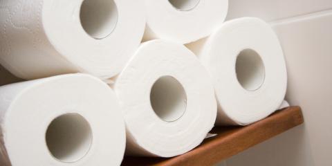 Over or Under: Unraveling the Debate on Toilet Paper, Ester, Alaska