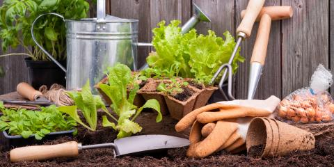 3 Types of Gardens & How to Care for Them, Whiteville, Arkansas