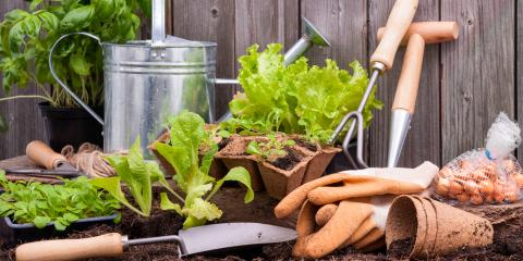 3 Garden Supplies All Beginners Should Have, Anchorage, Alaska