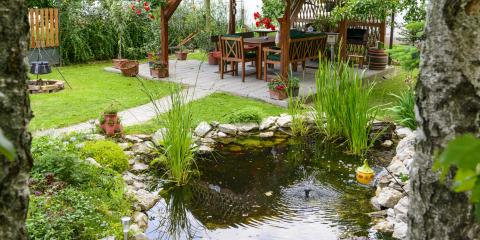 3 Steps to Control Cattails in Your Backyard Pond, East Bloomfield, New York