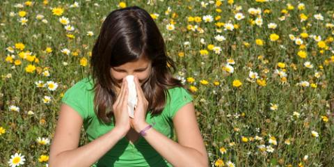3 Effective Ways to Manage Spring Allergies, Irondequoit, New York