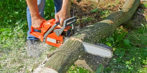 4 Chainsaws That Can Simplify Your Landscaping, Wentzville, Missouri