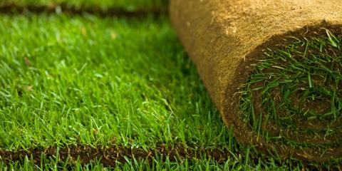 3 Common Sod Installation Mistakes to Avoid, St. Peters, Missouri