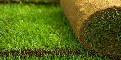 3 Yard Preparation Tips From a Professional Sodding Service, Hill, Arkansas