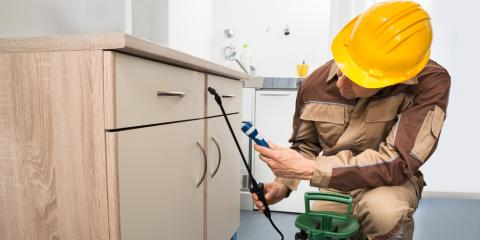 3 Tips to Choose the Right Pest Control Company, St. Louis, Missouri