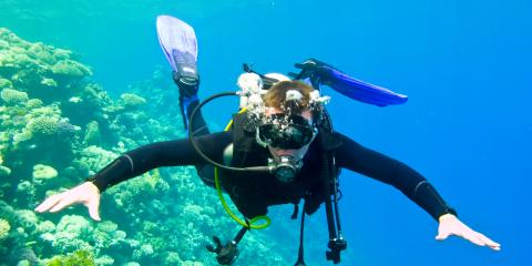 Scuba Diving? 3 Reasons to Not Touch Marine Life, Honolulu, Hawaii