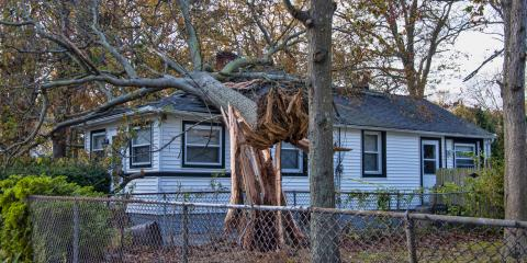 A Guide to Handling Storm Damage to Your Home, McKinney, Texas