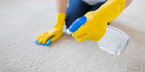 How Carpet Cleaning Helps Your Allergies, Brownstown, Pennsylvania