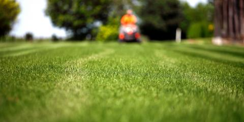 3 Benefits of Professional Lawn Maintenance Services, Enterprise, Alabama