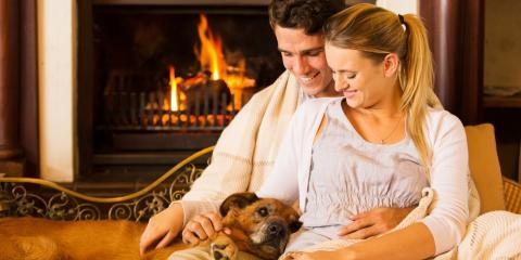 4 Ways to Avoid Pet-Related Fire Damage , San Antonio, Texas