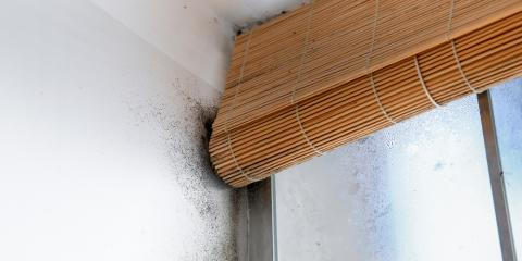 Home Inspector Shares Tips to Keep Mold From Growing in Your Home This Winter, Anderson, Ohio