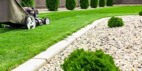 How to Spot Dormant Grass Caused By Summer Heat, Brookfield, Connecticut