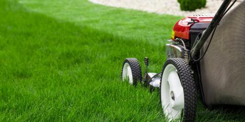 How Often Should My Lawn Be Mowed?, Altadena, California