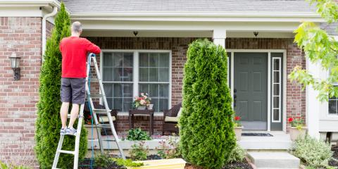 4 Tree Maintenance Tips for Spring, Clinton, Michigan