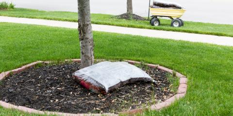 3 Easy Ways to Make Your Landscaping Attention-Grabbing, Long Valley, New Jersey