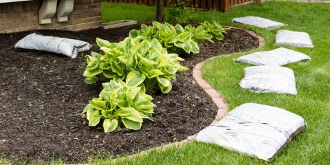 Do's & Don'ts of Mulching, Cromwell, Connecticut