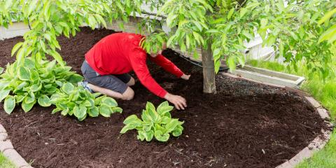 4 Benefits of Mulch for Your Landscaping, Trumbull, Connecticut