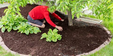 How Long Does Mulch Last & When Should You Replace It?, Batesburg-Leesville, South Carolina