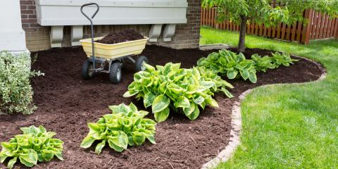 3 Types of Mulch to Beautify Your Landscaping, Lexington-Fayette, Kentucky