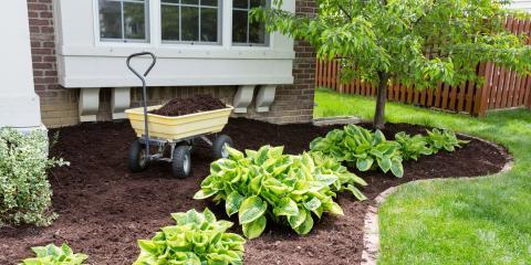 When to Apply Mulch in Your Garden, Burlington, Kentucky