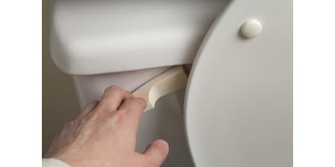 What Should You Never Flush Down the Toilet?, Minneapolis, Minnesota
