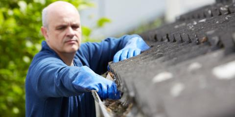 4 Ways to Protect Your Gutters From Animals, Danbury, Connecticut